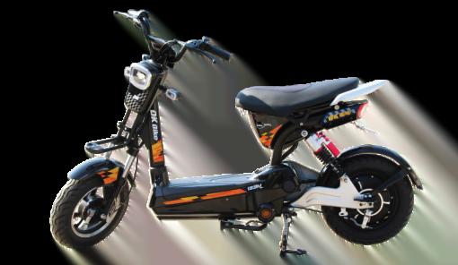 xe đạp điện Dk bike
